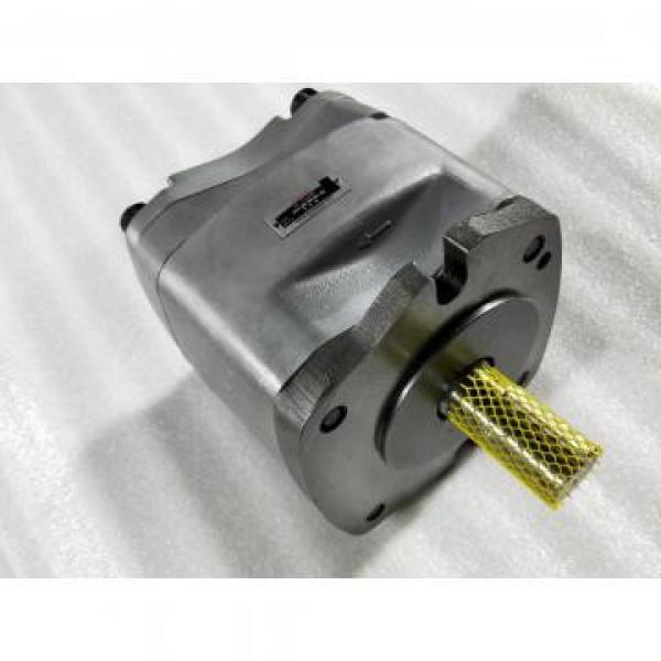 PVS-2A-35N3-12 Pompa Piston Hidrolik / Motor