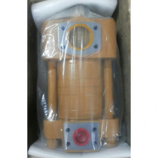 CQT63-80FV-S1376-A Pompa Roda Hidrolik