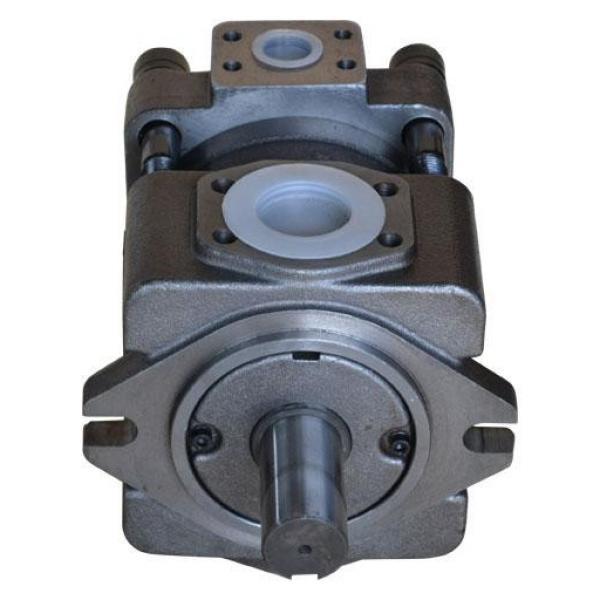 IPH-5B-50-11 Pompa Roda Hidrolik