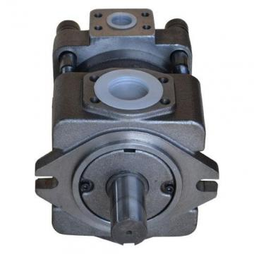 QT2323-6.3-6.3MN-S1162-A Pompa Roda Hidrolik