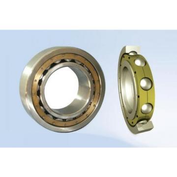 4454 INA Thrust Ball Bearings